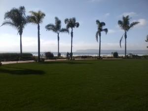 California Dreamin' - finally